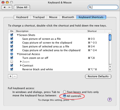 A picture of the Keyboard & Mouse dialog in System Preferences in Mac OS X